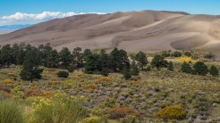 Dunes from Sand Pit Trail