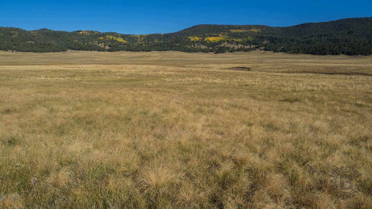 the valles caldera essay Geological summary the 22-km-wide valles caldera was formed as a result of  two large-volume eruptions that created the widespread bandelier tuff.