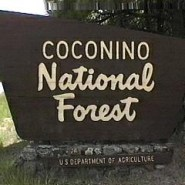 The hands behind the Forest Service's iconic signs
