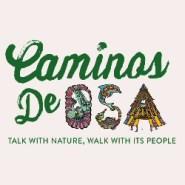How to hike Costa Rica's pristine Osa Peninsula