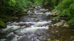 Big Creek at the trailhead