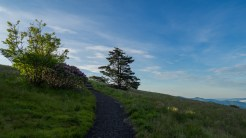 Climbing Round Bald