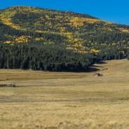 National Park Getaway: Valles Caldera National Preserve