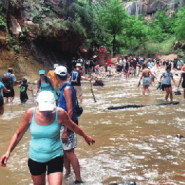 Planning a visit to Zion National Park? You might need to RSVP first