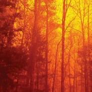 Interior Secretary Zinke fiddles on climate while America's national parks burn