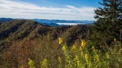 North Carolina Smokies from Newfound Gap