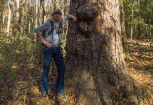 Jeff with a loblolly pine trunk