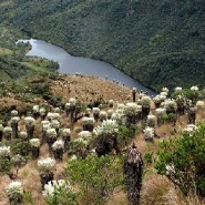 Everything You Know About Hiking in Colombia is Wrong