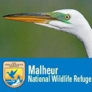 Crane's Nest Nature Center & Store:  Historical Context