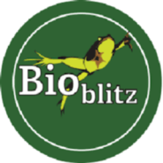 Cradle of Forestry Invites All Ages to Pink Beds BioBlitz