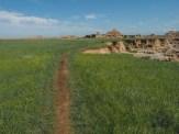 Following the arroyo