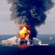 Deepwater Horizon disaster altered building blocks of ocean life