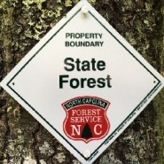 North Carolina's New Headwaters State Forest to open Sept. 6, 2018