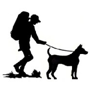 Hiking with dogs: How to protect them from ticks, injuries and overheating