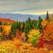 The Northeast's Best Day Hikes for Leaf Viewing