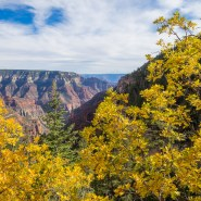 A Complete Guide to Grand Canyon Hiking: The Best Tours, Trails, and Tips