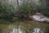 Grassy Creek from Sandy Trail