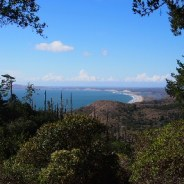 Backpacking for Beginners: Sky Campground in Point Reyes National Seashore