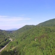 SAHC adds 448-acre Chestnut Mountain property in Haywood County