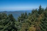 West from Mt. Mitchell summit