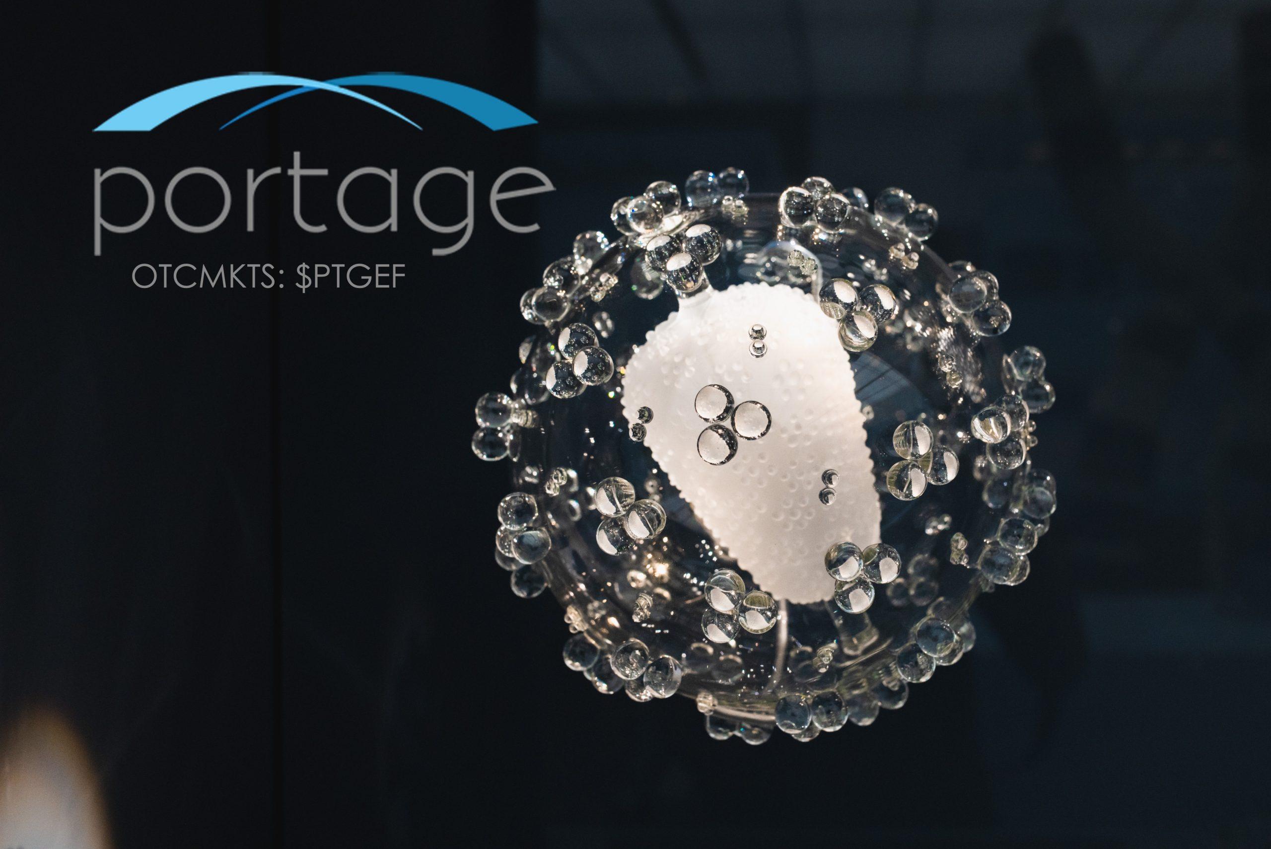 portage-biotech-ptgef-internet-bull-report