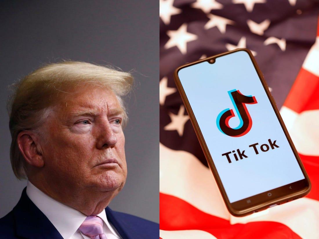 Tik Tok-President Trump- Microsoft-Internet-Bull-Report