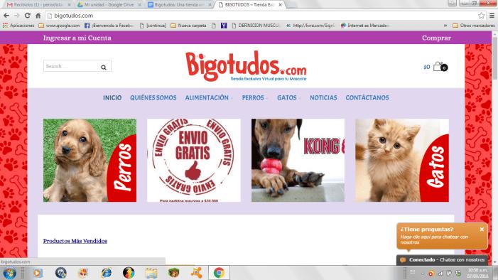 Bigotudos: Una tienda virtual para las mascotas