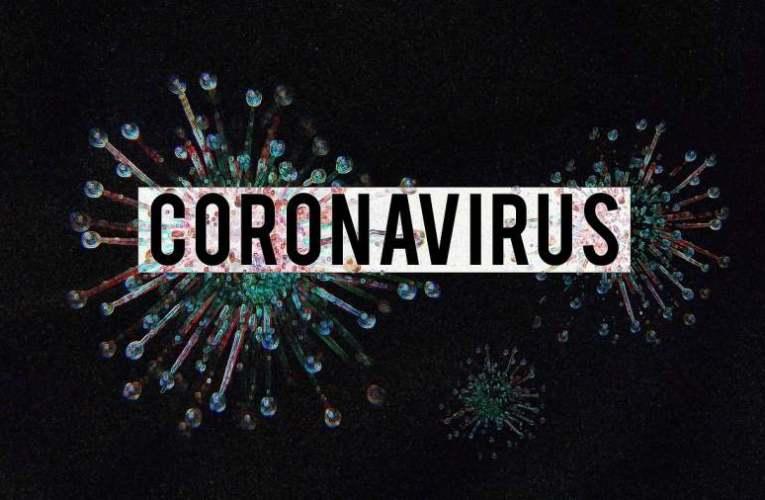 """A koronavírus: """"A véletlen műve"""" vagy biológiai fegyver? 📺"""