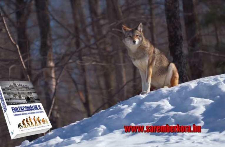 Szélszava és a farkasok tanítása – EMLÉKCSINÁLÓK 2