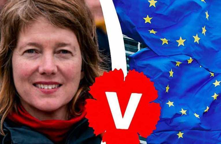 """""""Nemzeti jogvédő programajánló a hazánkban ideiglenesen """"állomásozó"""" Európai Parlament LIBE Bizottságának"""