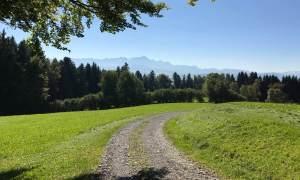 Der Weg ist das Ziel - Säntis im HIntergrund