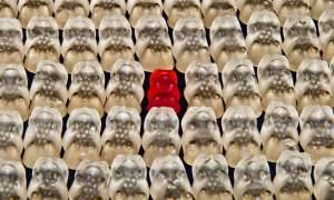 Ein rotes Gummibärchen unter tausend weissen