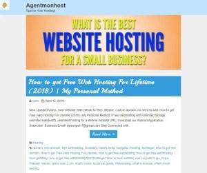 Agentmonhost 300x251 - Internet InfoMedia