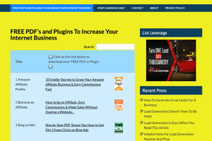 FREE PDF s and Plugins To Increase Your Internet Business Traffic Generation 300x200 - Internet InfoMedia