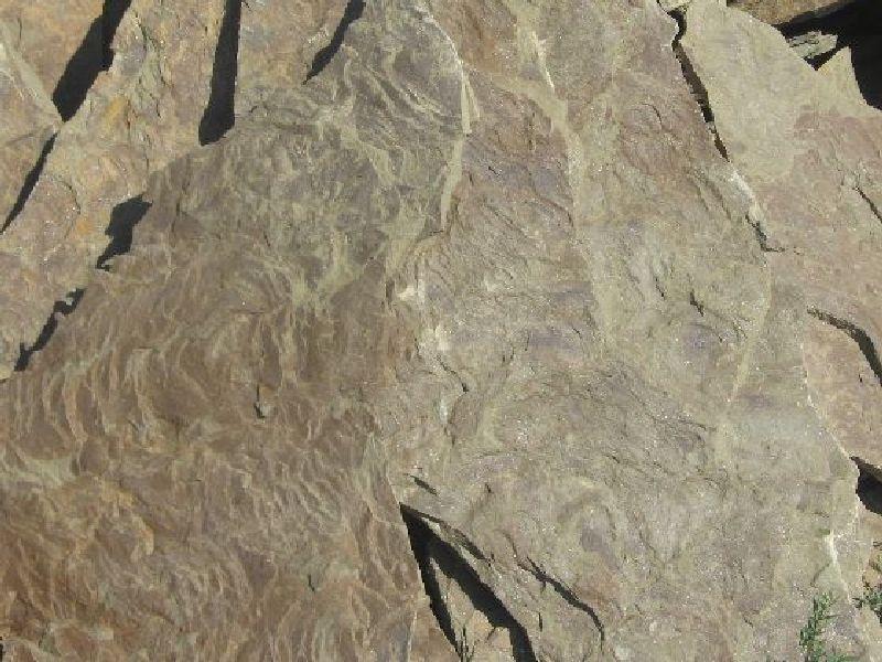 песчаник рельефный Дракон