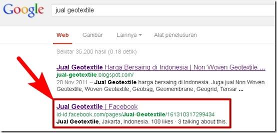 Facebook Fan Page di Google SERP