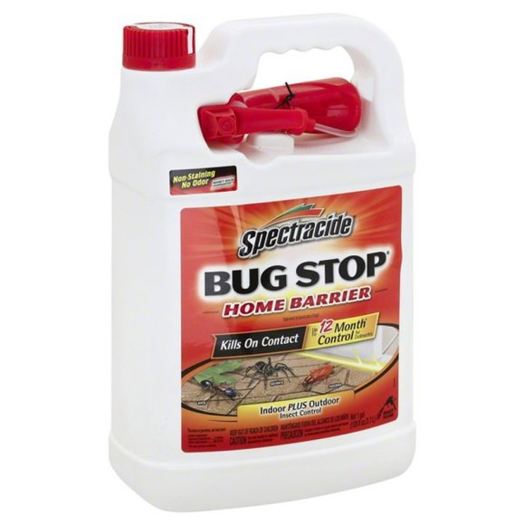 How to Prevent the Stink Bugs