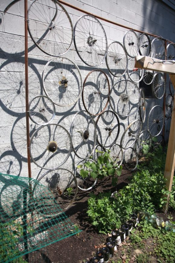 Recycled Bike Tire for Clematis Trellis