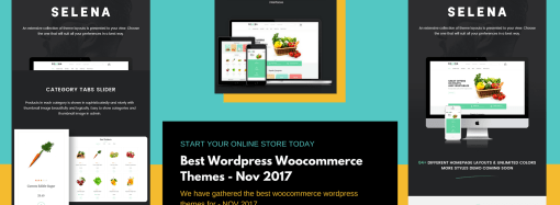 Best WordPress Woocommerce Themes Nov 2017 You Can Use For Starting An Online business