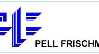 Internship Account : Niharika, Pell Frischmann