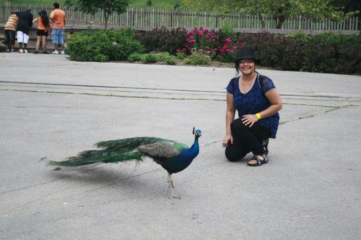 Garima Garg With Peacock
