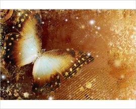 decori con farfalla