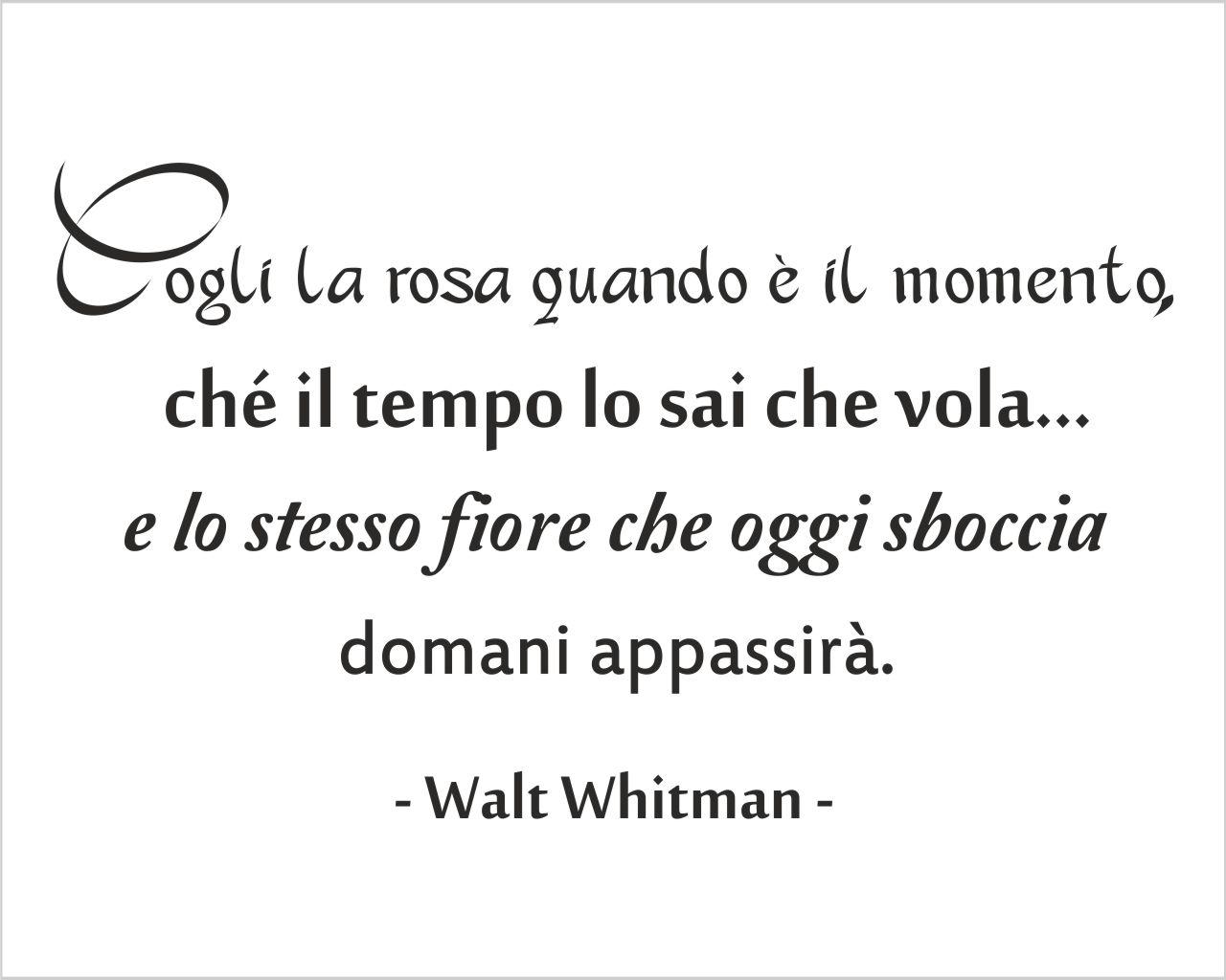 Walt Whitman Carpe Diem Frasi Aforismi Citazioni Adesivo