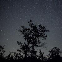 Guida galattica per fotografare le stelle (cadenti e non)