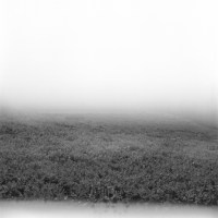 Post monofotografico n°22