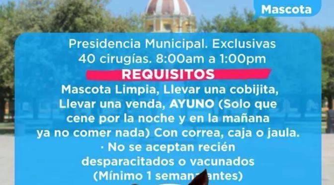 DOMINGO 19 DE NOVIEMBRE REALIZARAN CAMPAÑA DE ESTERILIZACIÓN
