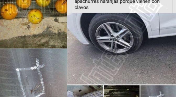 """JÓVENES GENERAN PSICOSIS AL HACER """"TRAVESURA"""" DE NARANJAS CON CLAVOS"""
