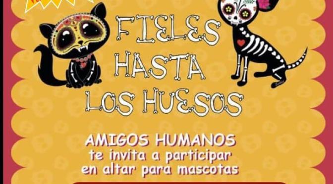 """PRIMER ALTAR DE MUERTOS """"FIELES HASTA LOS HUESOS"""""""
