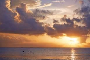 Viceroy Riviera Maya - Beach-2