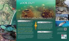 Environmental Panel, Reef Balls & Rock Fillets